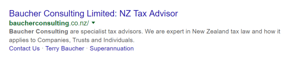 Baucher Consulting title tag on Google search