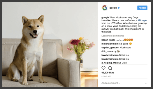 Actionable Takeaways from Instagrams Biggest Brands