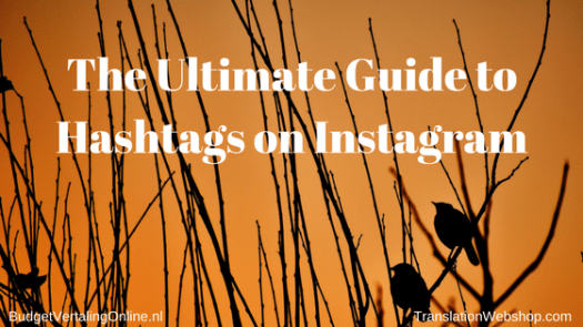 'The Ultimate Guide to Hashtags on Instagram' Are you using Instagram to grow your company? Instagram has great potential for entrepreneurs but sometimes, it is hard to find the best relevant hashtags to use and reach the widest audience possible. What is an entrepreneur to do? In this ultimate guide, you will find tips and tools for hashtags on Instagram, allowing you to grow the reach of your posts and, ultimately, your company: http://bit.ly/HashtagsOnIG