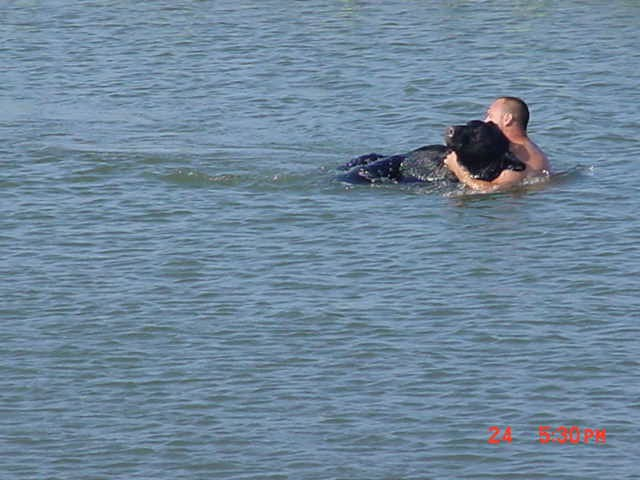 Brave Man Saving Drowning 400-lb Black Bear Is Possibly One Of The Greatest Rescue Stories Ever