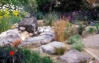 Rock garden with drought tolerant plants, large stones