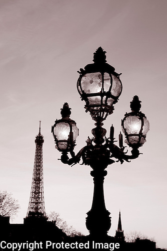 Eiffel Tower and Lamppost in Black and White, Paris