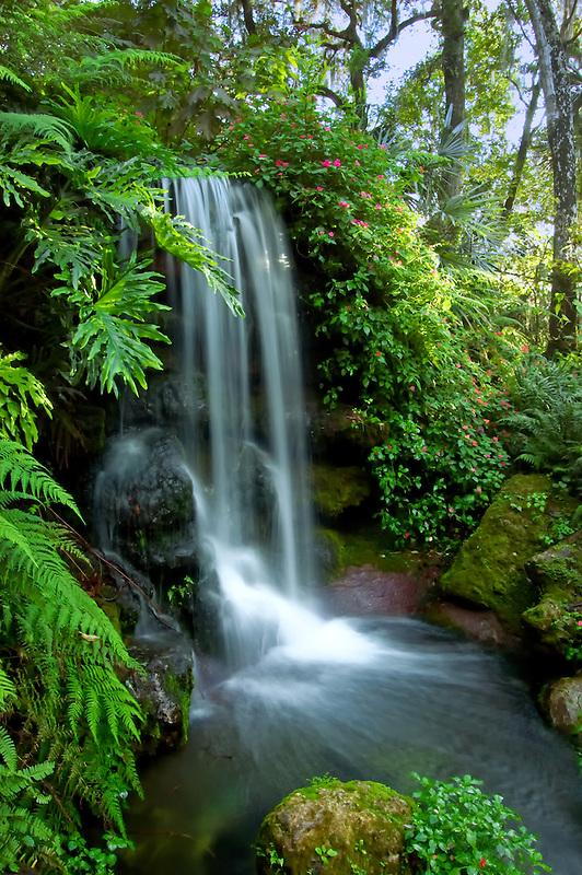 Natural Spring Waterfall  Rich Leighton