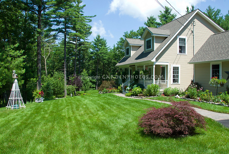 Nice Lawn Grass And Landscaping Plant Amp Flower Stock