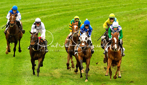 Horses racing on a grass course at Steeplechase.