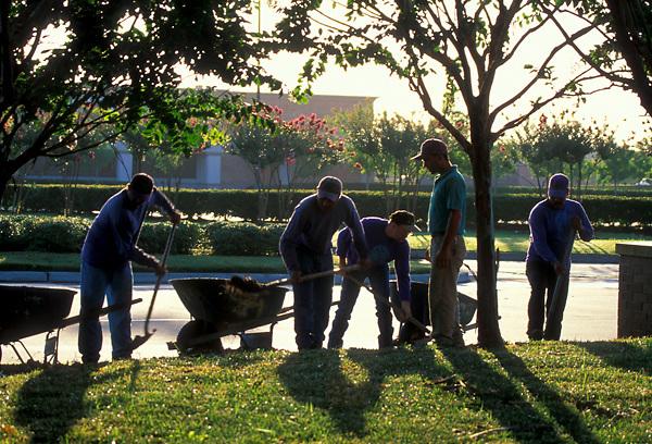 five men landscaping