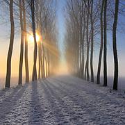 Winter Landscape Photography - The frozen landscape