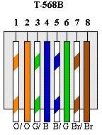 Cat5e B Wiring : cat5e, wiring, Network, Cable, Connectors, Cat5,, Cat6,, Fiber, Optics