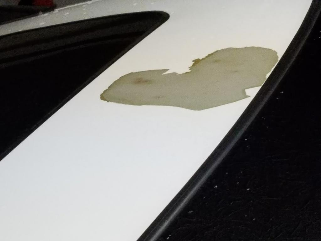 2012 Honda Odyssey Paint Peeling 12 Complaints