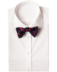 Polo Ralph Lauren Butterfly Silk Bowtie Navy/Red hos ...