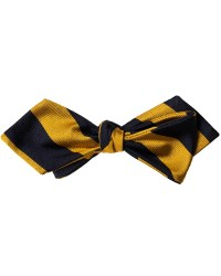 Polo Ralph Lauren Spencer Silk Bowtie Navy/Gold hos ...