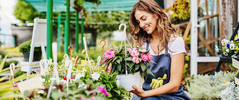 Lowes Vs Home Depot For Plants Gardening Cheapism Com