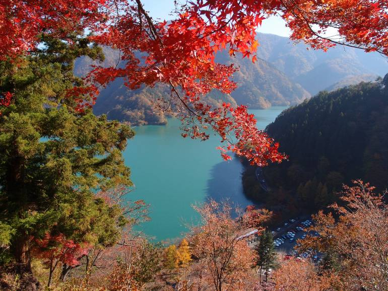 Okutama Autumn