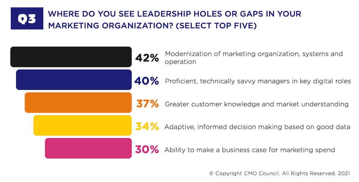 Gaps in the Marketing Organization