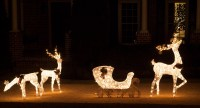 Outdoor Deer Christmas Decorations | Euffslemani.com