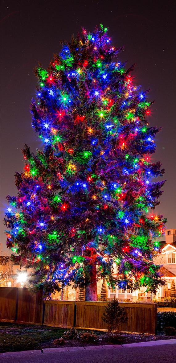 miniature christmas lights wiring diagram solar pv system hard tree free for you rh christmaslightsetc com schematic led light