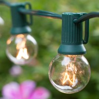 Patio Lights - Commercial Clear Globe String Lights, 20 ...