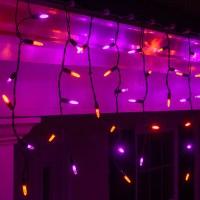 LED Christmas Lights - 70 M5 Purple, Orange Halloween LED ...