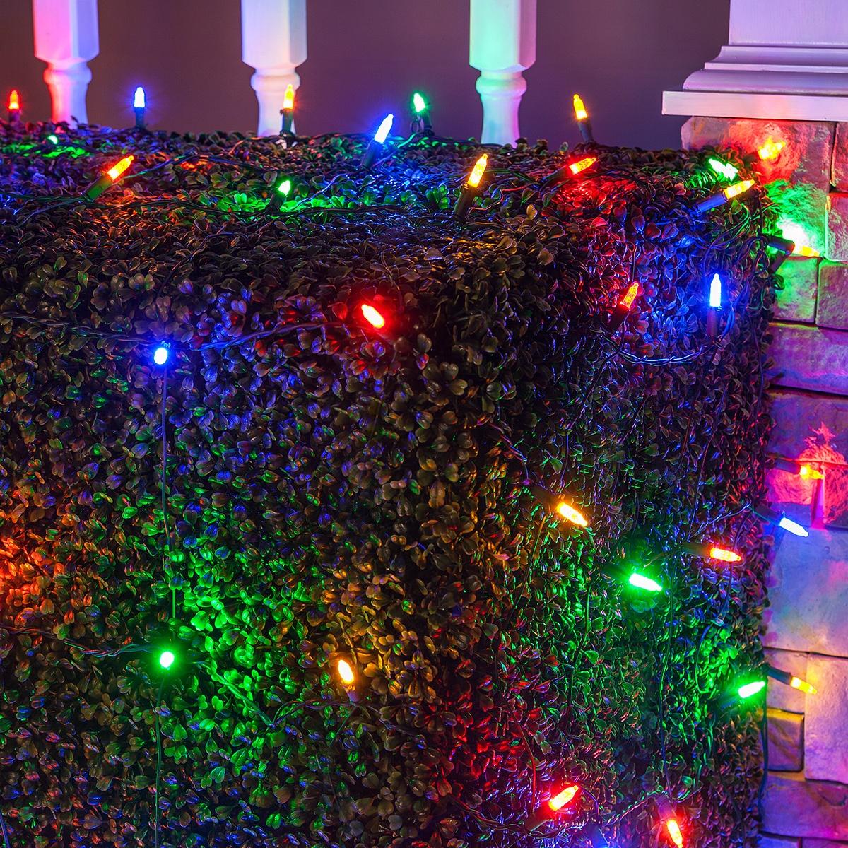 LED Net Lights  M5 4x6 Multicolored LED Net Lights