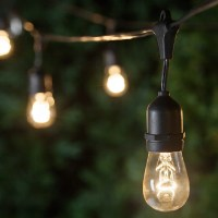 Patio Lights - Commercial Clear Patio String Lights, 24 ...