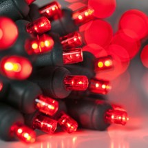 Battery Operated Lights - 20 Red 5mm Led