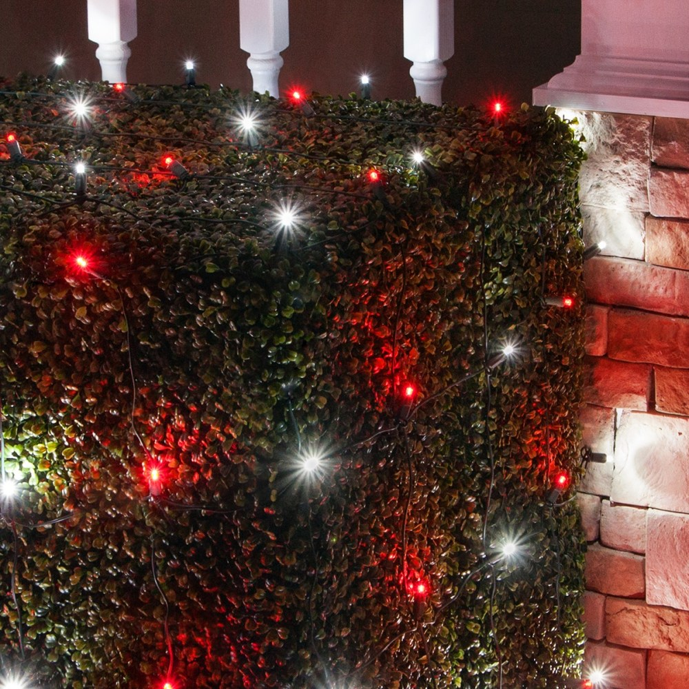 medium resolution of red and cool white led christmas net lights