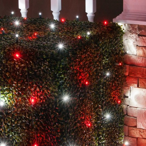 small resolution of red and cool white led christmas net lights