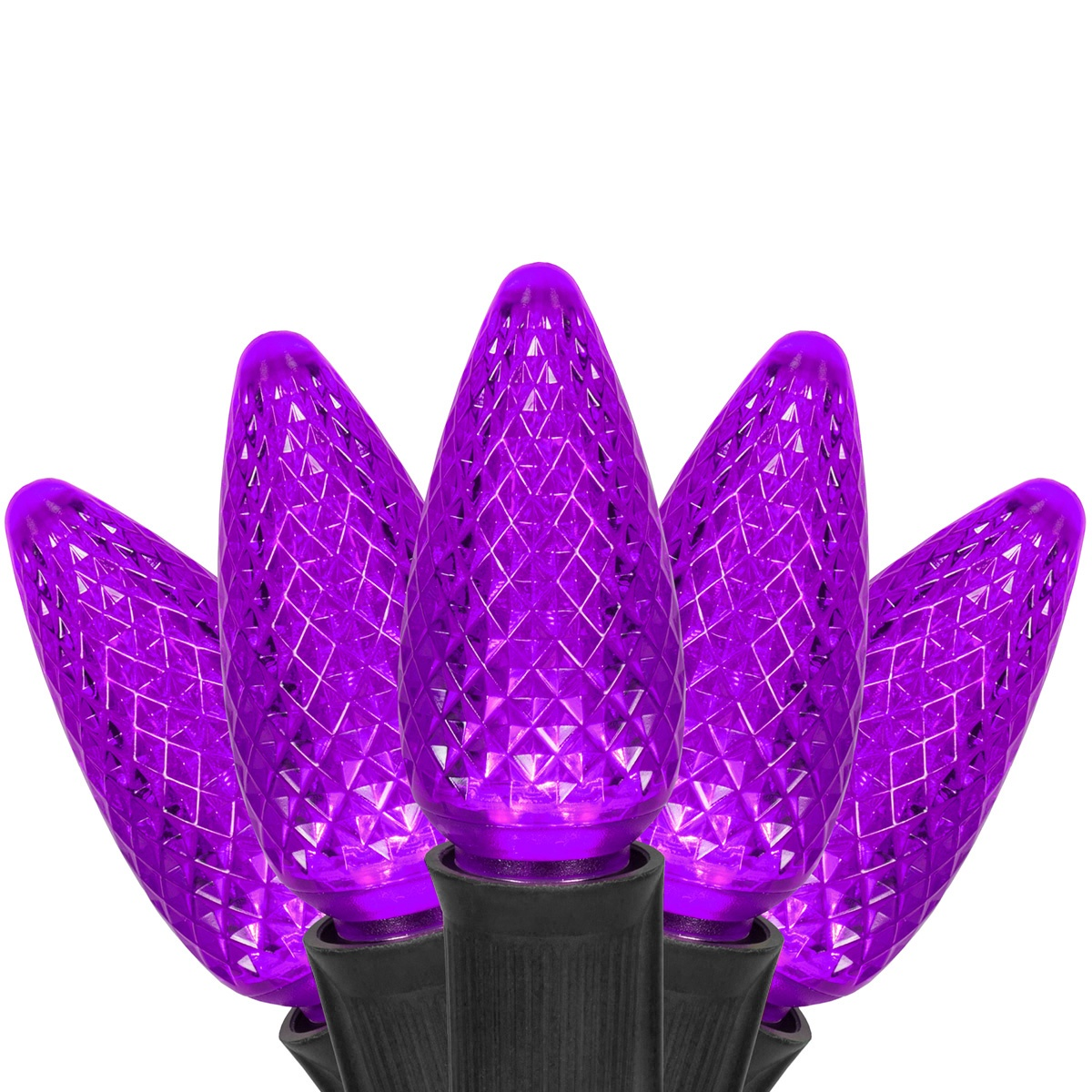 Halloween Lights  C9 Purple Commercial LED Halloween Lights