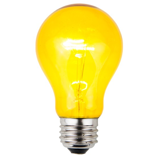 Picture Light Bulb
