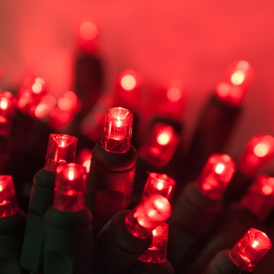 Wide Angle 5MM LED Lights  70 5mm Red LED Christmas