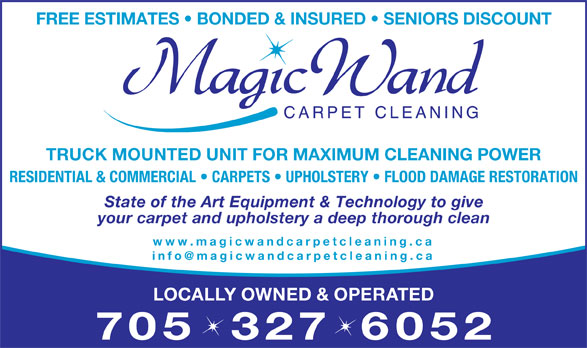 fabric sofa cleaner s big lots couch magic wand carpet cleaning - orillia, on 39 lewis dr ...