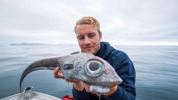 """Las impresionantes fotos de la """"bestia prehistórica"""" que pescaron y cocinaron en Noruega"""