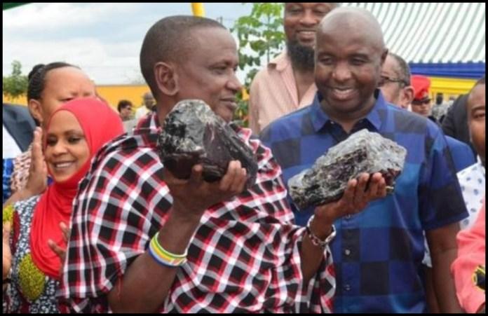 Encontró dos rocas de tanzanita y se hizo millonario (las vendió por 3 millones de euros)