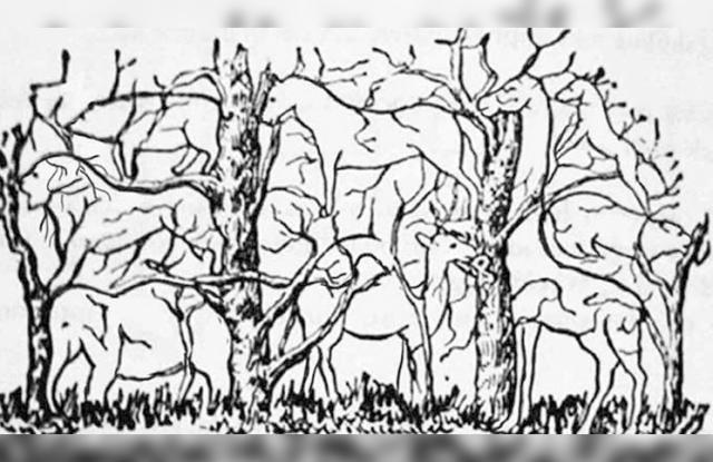 ¿Qué animal ves en el bosque?: el test psicológico que revela tu verdadera naturaleza