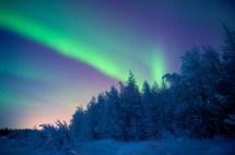 Las Auroras Boreales Junio Nos Dej - Planeta Vivo