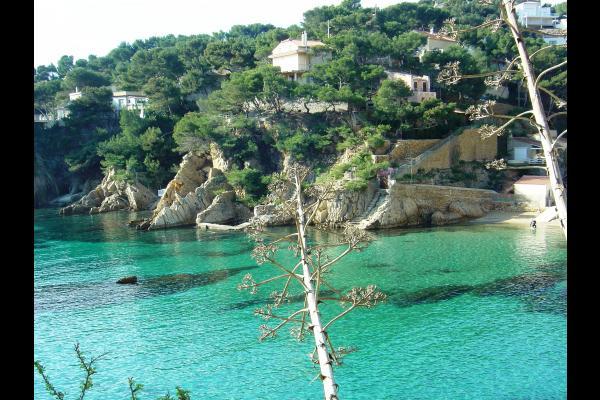 La Palmeraie des Calanques  Maison dhtes avec piscine jacuzzi 600 m de la plage Ensues la