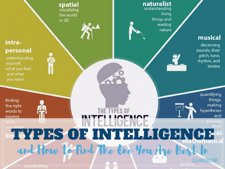 Types of Intelligence and How to Find The One You Are Best In