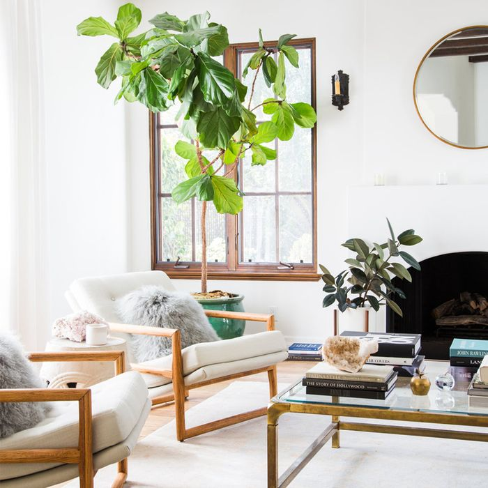 furnishing a tiny living room how can i design my 8 genius small ideas to make the most your space mydomaine
