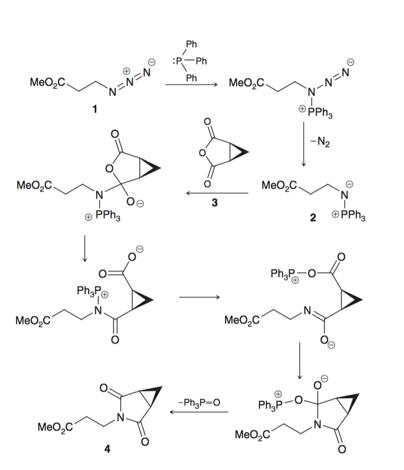 Indolizomycin is a potent antibiotic agent produced b...