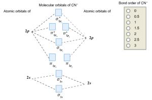 Complete this molecular orbital diagram fo | Clutch Prep