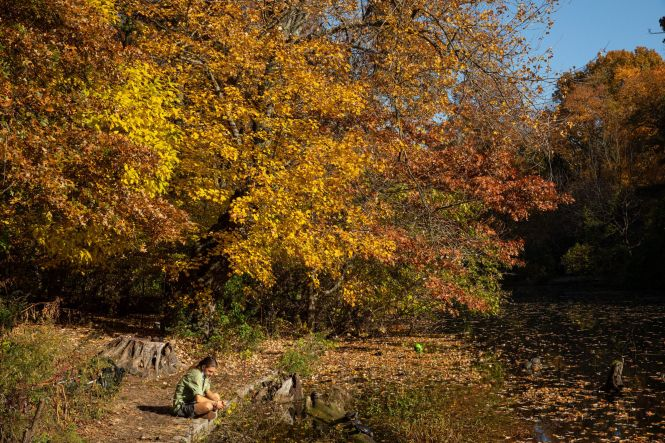 A photo of a person sitting in Prospect Park