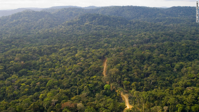 Gabon receives $150 million to preserve its rainforest