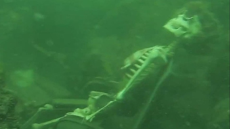 office chair sinking danish chairs for sale diver looking skeleton finds underwater tea party - cnn