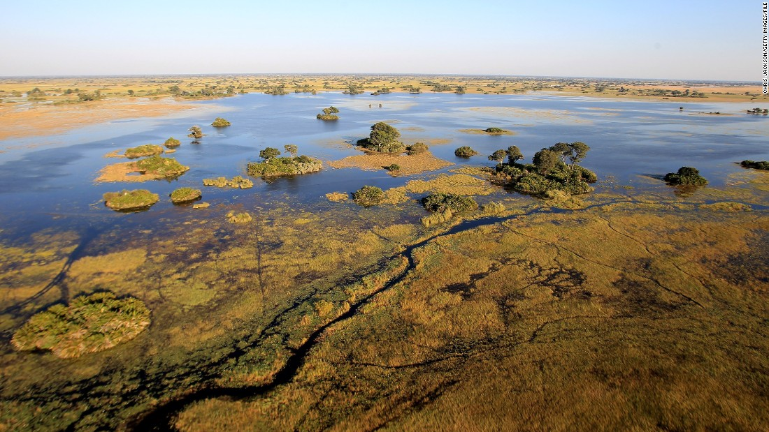 Image result for Okavango delta