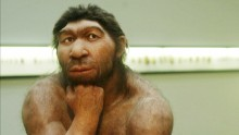 There is a little caveman in all of us: the first human blood relatives