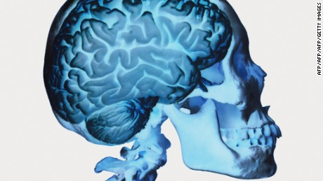 Studies test your brain to keep your brain healthy