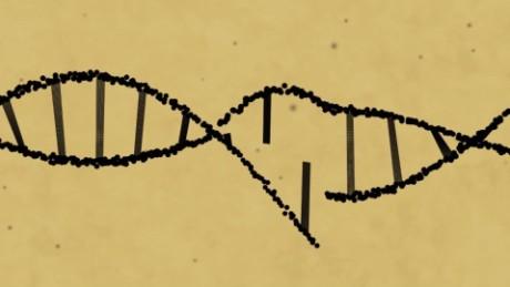 Scientists edit disease-causing gene mutation in human embryos