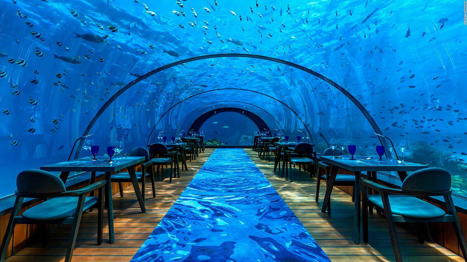 hurawalhi maldives underwater restaurant