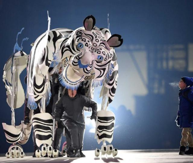 A White Tiger Is Portrayed At The Beginning Of The Ceremony The Tiger Is Quot