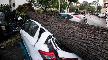 A car is crushed under a fallen tree after it was knocked down by heavy winds in Rome on Monday.